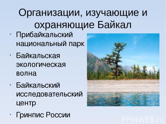 Организации, изучающие и охраняющие Байкал Прибайкальский национальный парк Байкальская экологическая волна Байкальский исследовательский центр Гринпис России