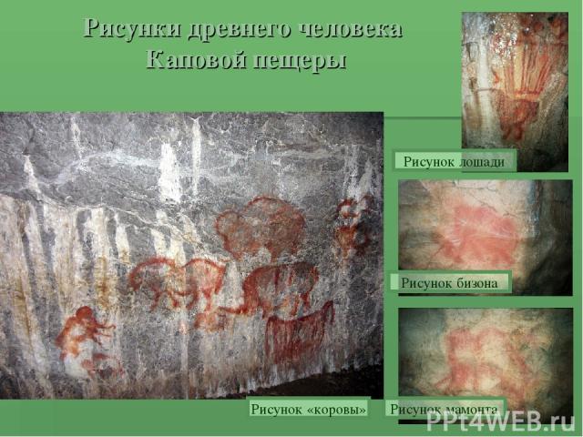 Рисунки древнего человека Каповой пещеры Рисунок лошади Рисунок бизона Рисунок мамонта Рисунок «коровы»