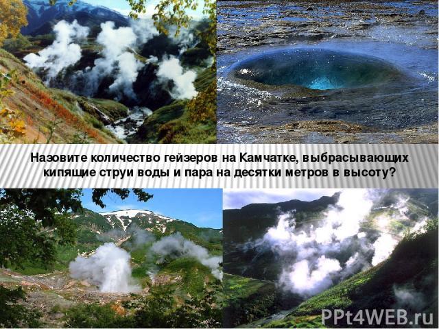 Назовите количество гейзеров на Камчатке, выбрасывающих кипящие струи воды и пара на десятки метров в высоту?