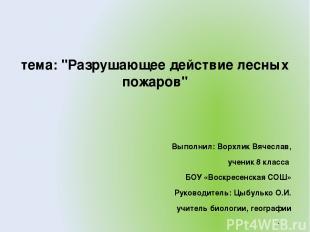 """тема: """"Разрушающее действие лесных пожаров"""" Выполнил: Ворхлик Вячеслав, ученик 8"""