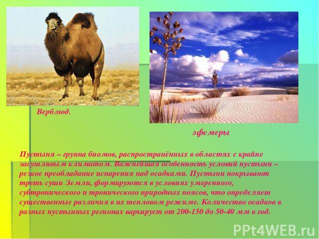 Верблюд. эфемеры Пустыня – группа биомов, распространённых в областях с крайне засушливым климатом. Важнейшая особенность условий пустыни – резкое преобладание испарения над осадками. Пустыни покрывают треть суши Земли, формируются в условиях умерен…