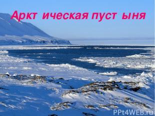 Арктическая пустыня