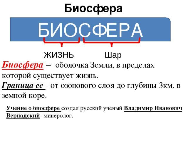Биосфера БИОСФЕРА ЖИЗНЬ Шар Биосфера – оболочка Земли, в пределах которой существует жизнь. Граница ее - от озонового слоя до глубины 3км. в земной коре. Учение о биосфере создал русский ученый Владимир Иванович Вернадский- минеролог.