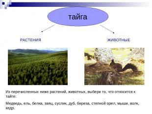 тайга РАСТЕНИЯ ЖИВОТНЫЕ Из перечисленных ниже растений, животных, выбери то, что