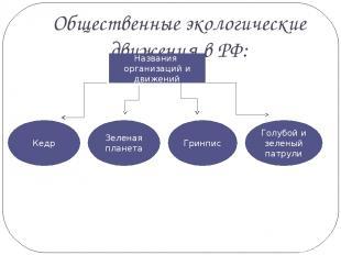 Общественные экологические движения в РФ: Названия организаций и движений Кедр Г