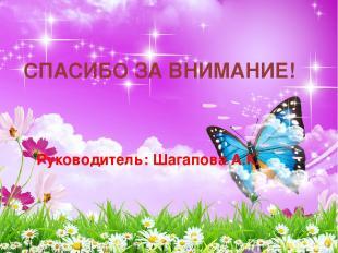 СПАСИБО ЗА ВНИМАНИЕ! Руководитель: Шагапова А.К.