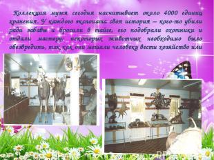 Коллекция музея сегодня насчитывает около 4000 единиц хранения. У каждого экспон