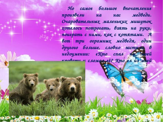 Но самое большое впечатление произвели на нас медведи. Очаровательных маленьких мишуток хотелось потрогать, взять на руки, поиграть с ними, как с котятами. А вот три огромных медведя, один другого больше, словно застыли в недоумении: «Кто спал на мо…