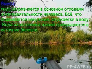 Вывод: пруд загрязняется в основном отходами жизнедеятельности человека. Всё, чт