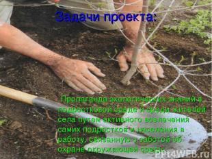 Задачи проекта: Пропаганда экологических знаний в подростковой среде и среди жит