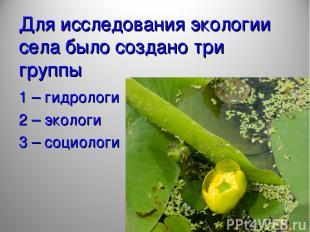 Для исследования экологии села было создано три группы 1 – гидрологи 2 – экологи