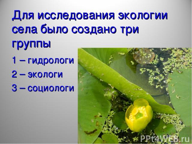 Для исследования экологии села было создано три группы 1 – гидрологи 2 – экологи 3 – социологи