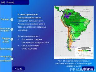В экваториальном климатическом поясе находится большая часть Амазонской низменно