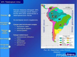 Южная Америка обладает 28% общей площади лесов мира и более 50% всех тропических