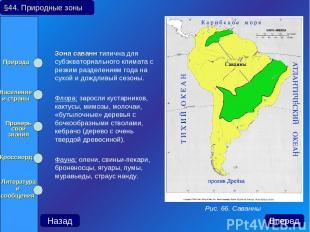 Зона саванн типична для субэкваториального климата с резким разделением года на