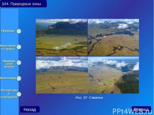 §44. Природные зоны Назад Вперед Рис. 67. Саванна Природа Население и страны Про