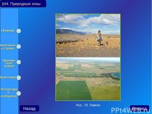 §44. Природные зоны Назад Вперед Рис. 73. Пампа Природа Население и страны Прове