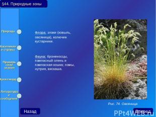 Флора: злаки (ковыль, овсяница), колючие кустарники. Фауна: броненосцы, пампасны