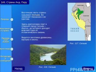 Восточную часть страны называют Сельва. Ее занимает Амазонка и ее притоки. Здесь