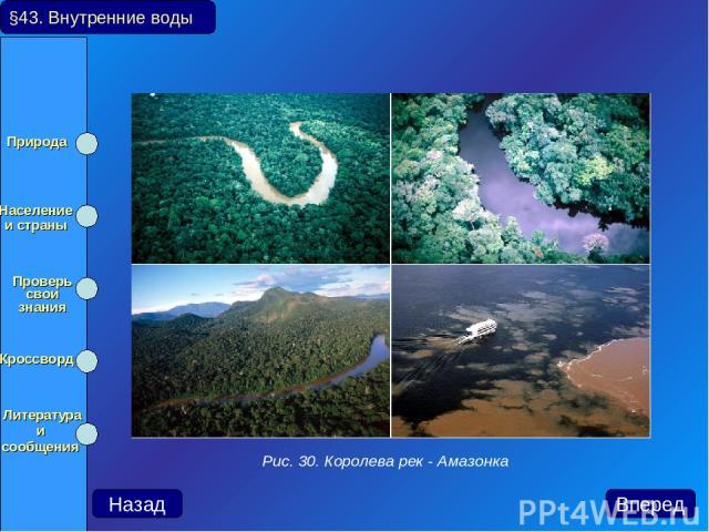 §43. Внутренние воды Рис. 30. Королева рек - Амазонка Природа Население и страны Проверь свои знания Кроссворд Литература и сообщения Назад Вперед