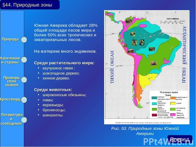 Южная Америка обладает 28% общей площади лесов мира и более 50% всех тропических и экваториальных лесов. На материке много эндемиков. Среди растительного мира: каучуконос гевея ; шоколадное дерево; хинное дерево. Среди животных: широконосые обезьяны…