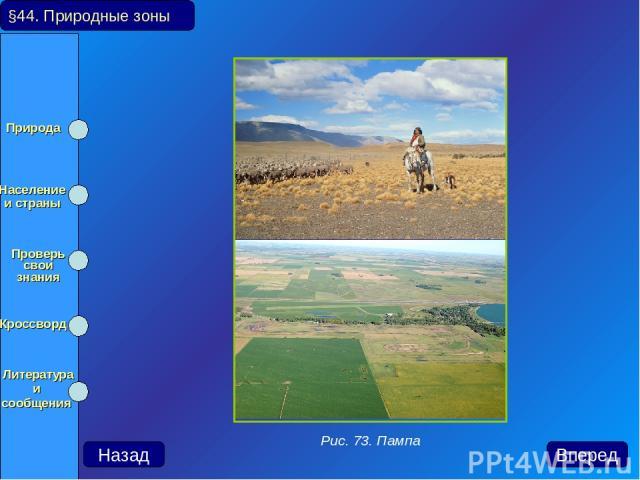 §44. Природные зоны Назад Вперед Рис. 73. Пампа Природа Население и страны Проверь свои знания Кроссворд Литература и сообщения