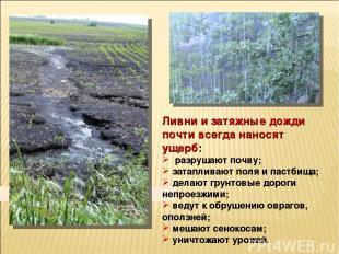 Ливни и затяжные дожди почти всегда наносят ущерб: разрушают почву; затапливают