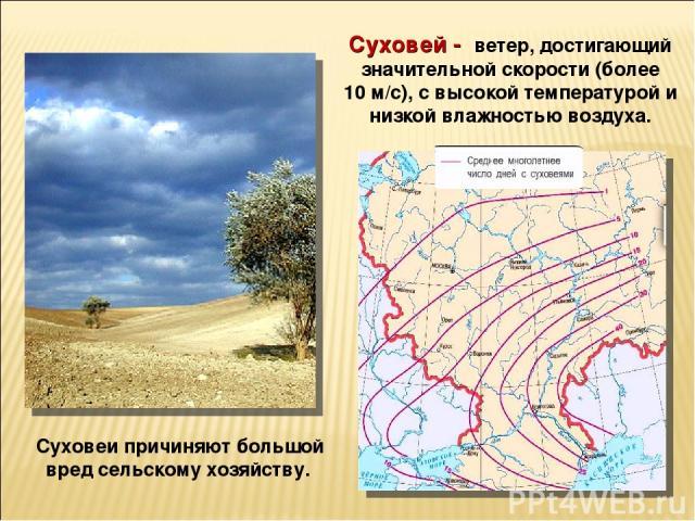 Суховеи причиняют большой вред сельскому хозяйству. Суховей - ветер, достигающий значительной скорости (более 10м/с), с высокой температурой и низкой влажностью воздуха.