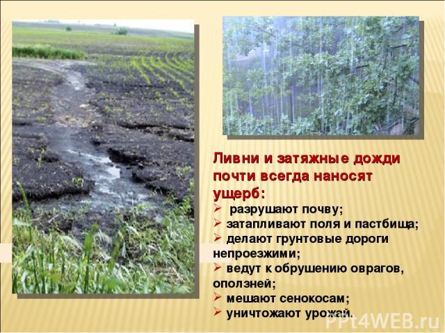 Ливни и затяжные дожди почти всегда наносят ущерб: разрушают почву; затапливают поля и пастбища; делают грунтовые дороги непроезжими; ведут к обрушению оврагов, оползней; мешают сенокосам; уничтожают урожай.