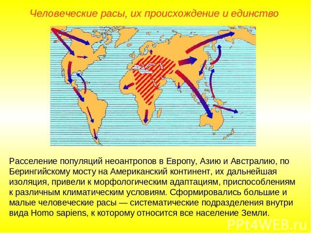 Человеческие расы, их происхождение и единство Расселение популяций неоантропов в Европу, Азию и Австралию, по Берингийскому мосту на Американский континент, их дальнейшая изоляция, привели к морфологическим адаптациям, приспособлениям к различным к…