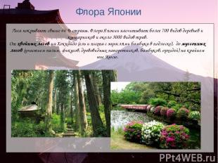 Флора Японии Леса покрывают свыше 66% страны. Флора Японии насчитывает более 70