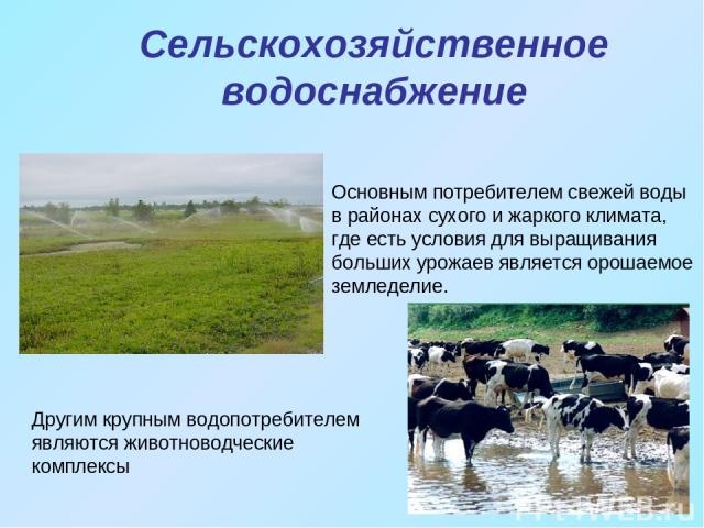 Сельскохозяйственное водоснабжение Основным потребителем свежей воды в районах сухого и жаркого климата, где есть условия для выращивания больших урожаев является орошаемое земледелие. Другим крупным водопотребителем являются животноводческие комплексы