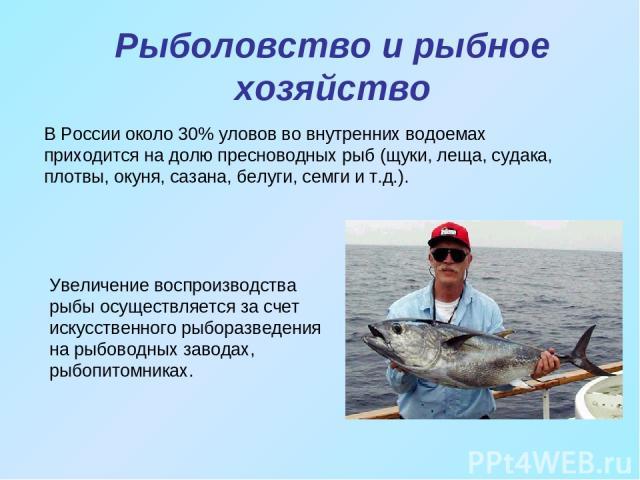 Рыболовство и рыбное хозяйство В России около 30% уловов во внутренних водоемах приходится на долю пресноводных рыб (щуки, леща, судака, плотвы, окуня, сазана, белуги, семги и т.д.). Увеличение воспроизводства рыбы осуществляется за счет искусственн…