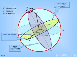 А.С.А. P P' Небесный экватор W E N S Круг склонения ɤ Точка весеннего равноденст