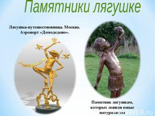 Памятник лягушкам, которых ловили юные натуралисты Лягушка-путешественница. Моск