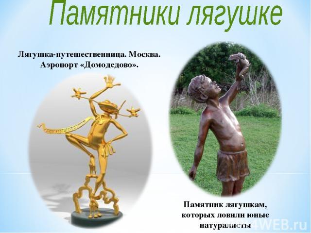 Памятник лягушкам, которых ловили юные натуралисты Лягушка-путешественница. Москва. Аэропорт «Домодедово».