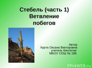 Автор Курта Оксана Викторовна учитель биологии МБОУ СОШ № 189. Стебель (часть 1)