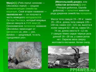 Ману л[1] (Felis manul; синоним— Otocolobus manul)— хищное млекопитающее семей