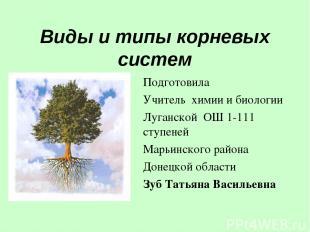 Виды и типы корневых систем Подготовила Учитель химии и биологии Луганской ОШ 1-