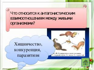 Что относится к антагонистическим взаимоотношениям между живыми организмами? Хищ
