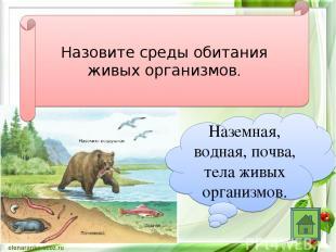 Назовите среды обитания живых организмов. Наземная, водная, почва, тела живых ор
