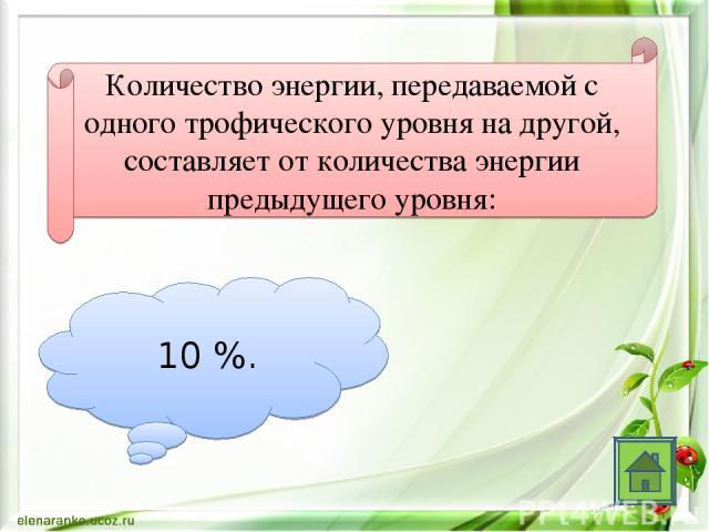 Количество энергии, передаваемой с одного трофического уровня на другой, составляет от количества энергии предыдущего уровня: 10 %.