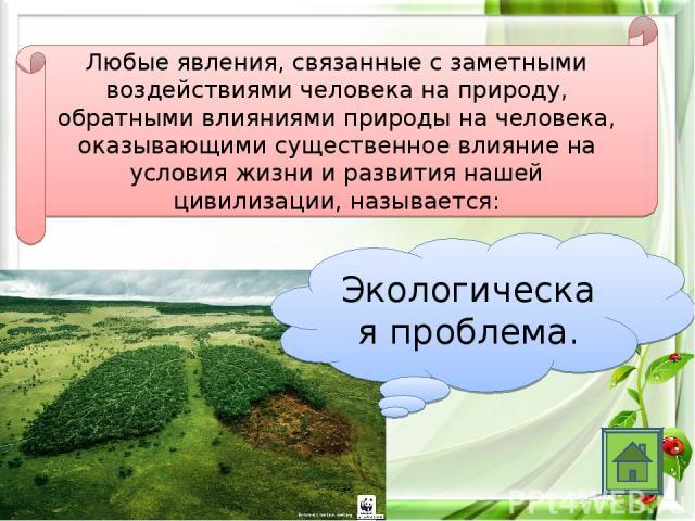Любые явления, связанные с заметными воздействиями человека на природу, обратными влияниями природы на человека, оказывающими существенное влияние на условия жизни и развития нашей цивилизации, называется: Экологическая проблема.