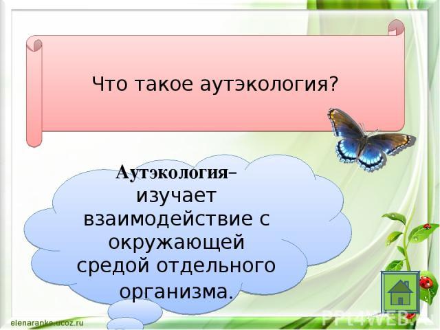 Что такое аутэкология? Аутэкология– изучает взаимодействие с окружающей средой отдельного организма.