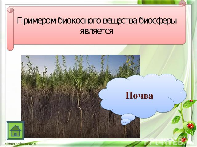 Примером биокосного вещества биосферы является Почва