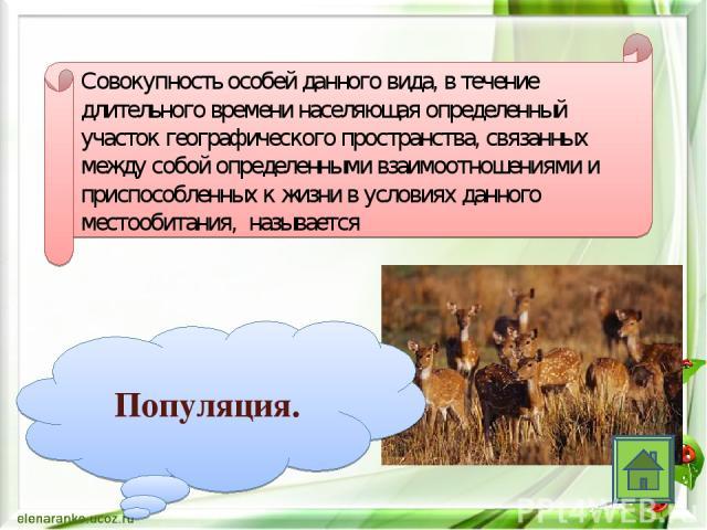 Совокупность особей данного вида, в течение длительного времени населяющая определенный участок географического пространства, связанных между собой определенными взаимоотношениями и приспособленных к жизни в условиях данного местообитания, называет…