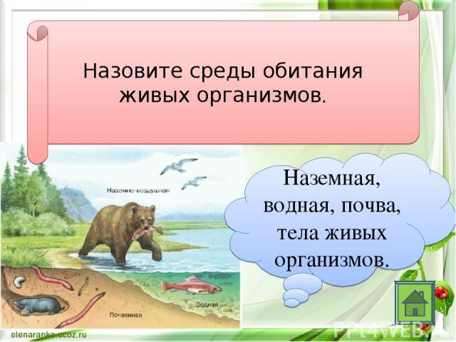 Назовите среды обитания живых организмов. Наземная, водная, почва, тела живых организмов.