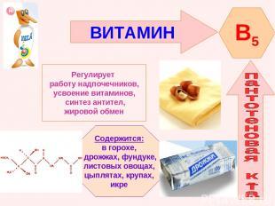 ВИТАМИН B5 Регулирует работу надпочечников, усвоение витаминов, синтез антител,