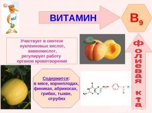 ВИТАМИН B9 Участвует в синтезе нуклеиновых кислот, аминокислот, регулирует работ