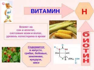 ВИТАМИН H Влияет на сон и аппетит, состояние кожи и волос, уровень холестерина в